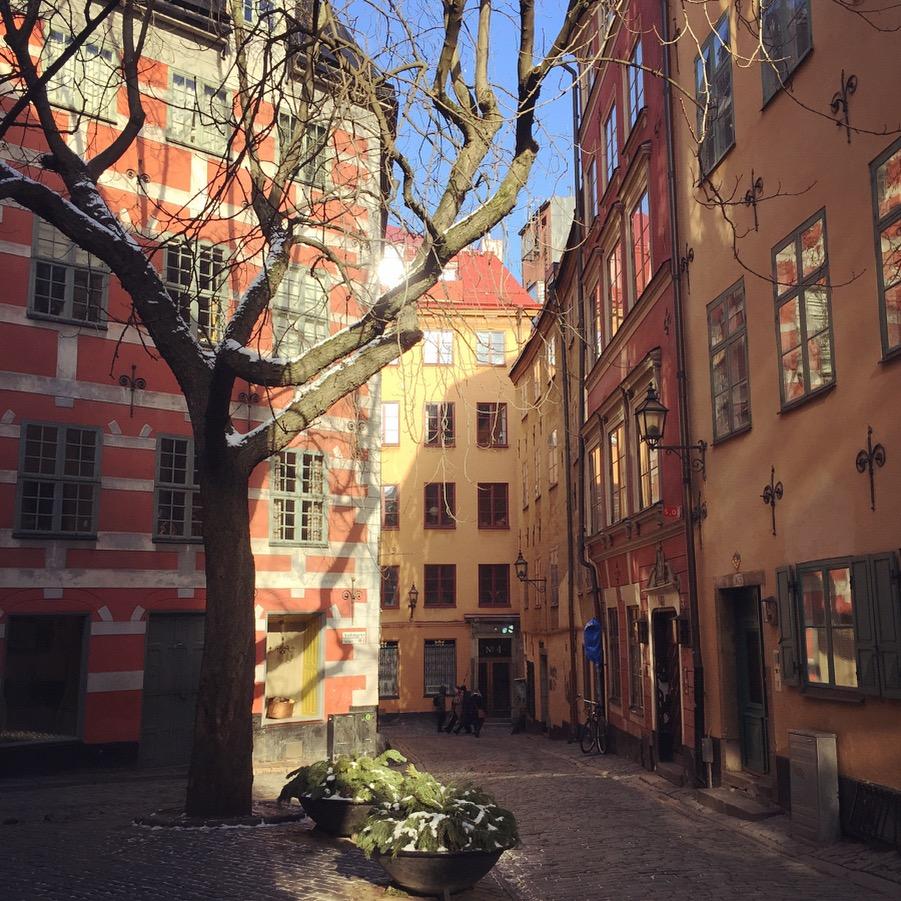 Gamla Stan Stockholm Under Kastanjen